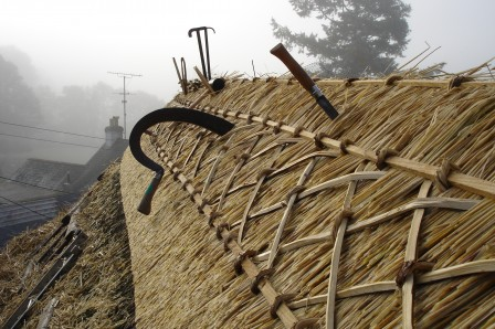 Thatching Coppice Products